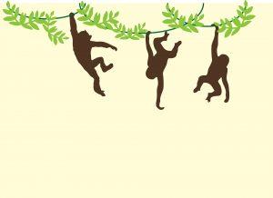 monkeys-909278_1920